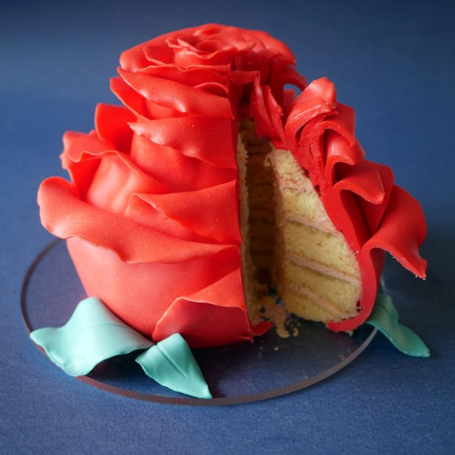 A slice from a rose